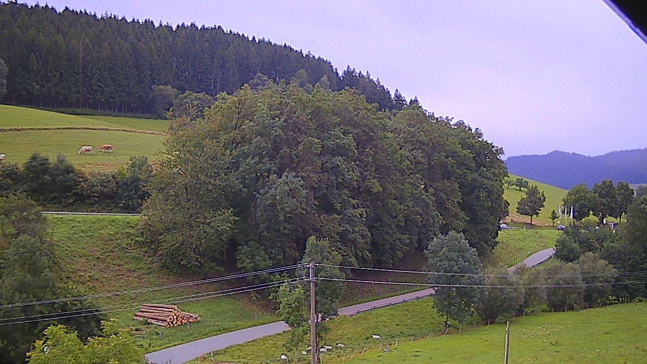 Webcam-Ansicht beim Landgasthof Adler-Pelzmühle, Pelzmühle 1, 79215 Biederbach